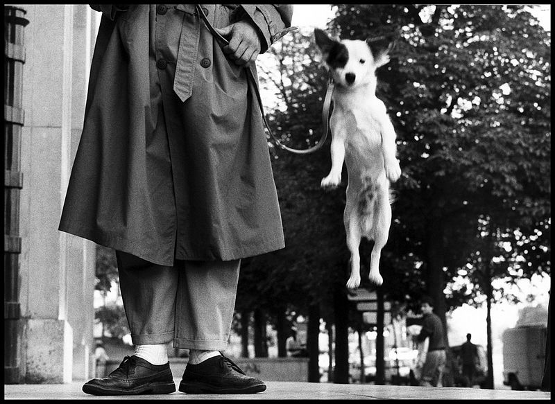 Fotografia di strada: tutti i migliori street photographer