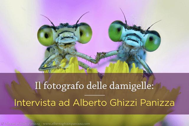 Il fotografo delle damigelle
