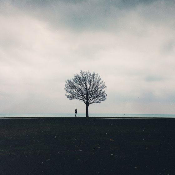 Cocu_Liu_fotografie_natura_iPhone