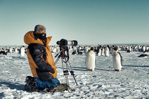Douglas Allan, Photographer