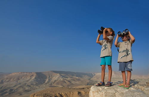 154_Dafna Tal_NEGEV_BIRDWATCHING_IMOT by Israel_photo_gallery, on Flickr