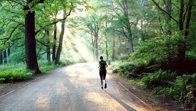 morning run @Tiergarten