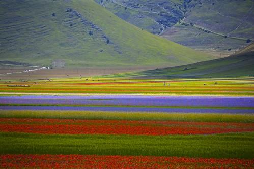 foto di paesaggi colorati