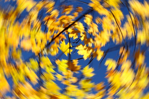 Blue and yellow swirls by Kerri Lee Smith, on Flickr
