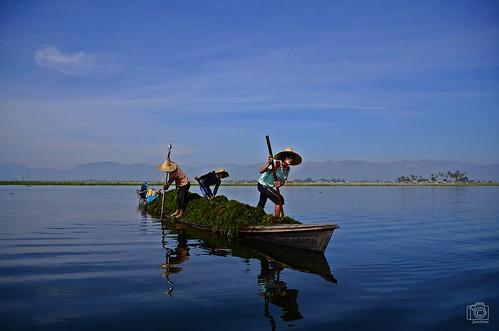 Working on Inle Lake by jennifer.stahn, on Flickr
