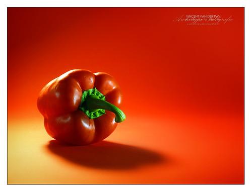 Red Red Pepper by Vincent van der Pas, on Flickr
