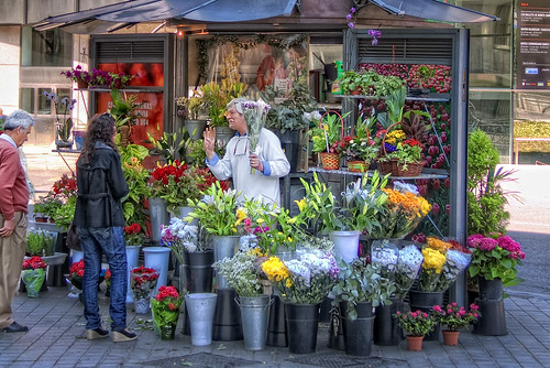 Florist's Shop – Floristería, Madrid, by marcp_dmoz, on Flickr