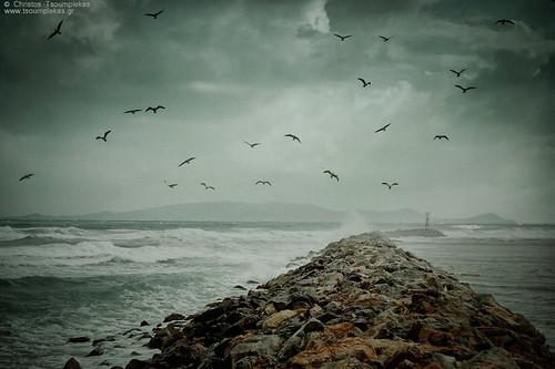 Missing them... by Christos Tsoumplekas (Back again!), on Flickr