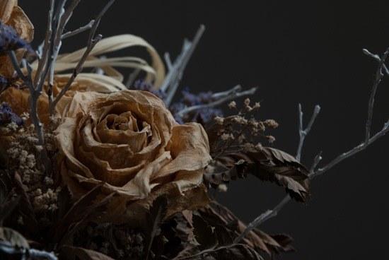 Come creare dal nulla uno sfondo nero per le foto… usando il flash